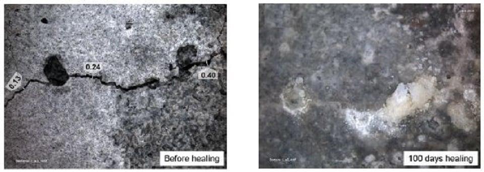 Photo credit: http://www.readymadeseminar.com/2015/06/bacteria-based-self-healing-concrete.html